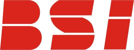 BSI Ochrona Osób i Mienia